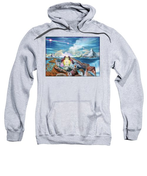 Do You Have A Vision Sweatshirt