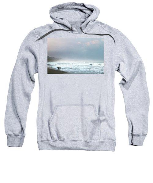 Dog On A Costa Rica Beach Sweatshirt