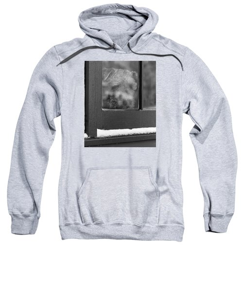 Doggy In The Window Sweatshirt