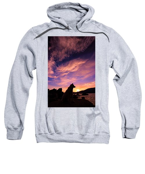 Dogs Dream Too  Sweatshirt