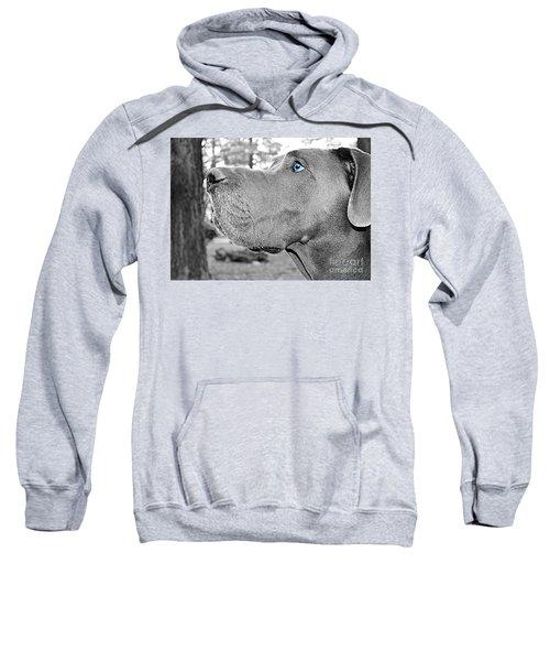 Dogus Sweatshirt