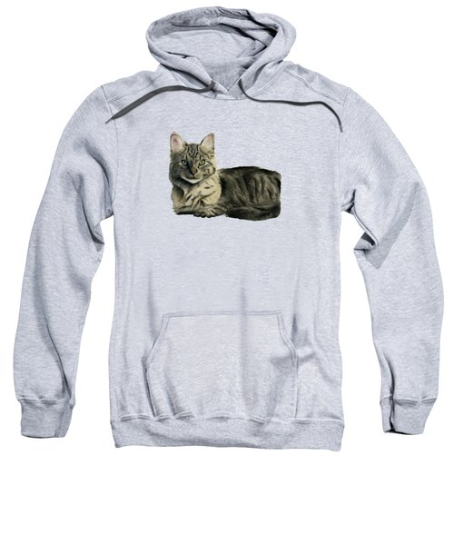 Domestic Medium Hair Cat Watercolor Painting Sweatshirt
