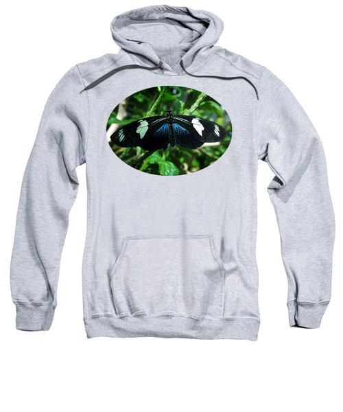 Doris Longwing Sweatshirt