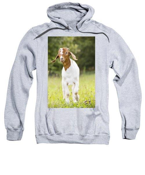 Dougie The Goat Sweatshirt