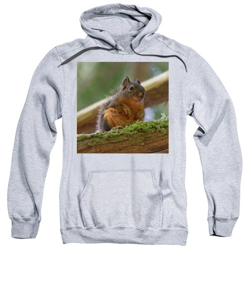 Douglas Squirrel Sweatshirt