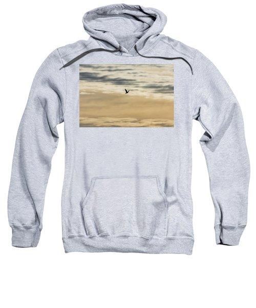 Dove In The Clouds Sweatshirt