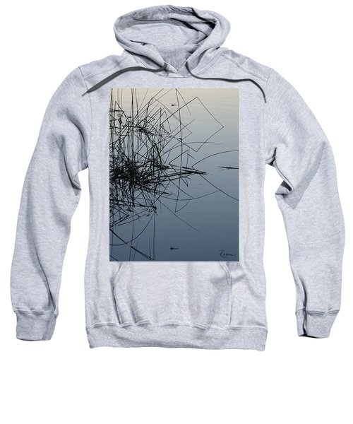 Dragonfly Reflections Sweatshirt