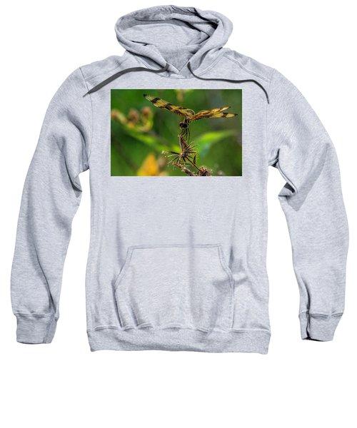 Dragonfly Resting On Flower Sweatshirt