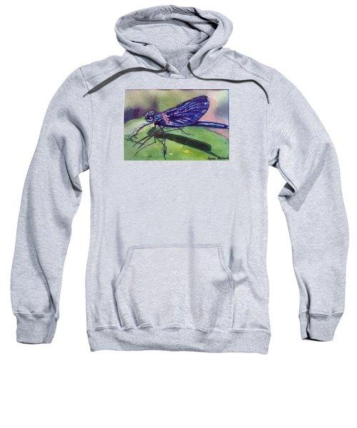 Dragonfly With Shadow Sweatshirt