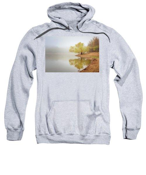 Dream Tree Sweatshirt