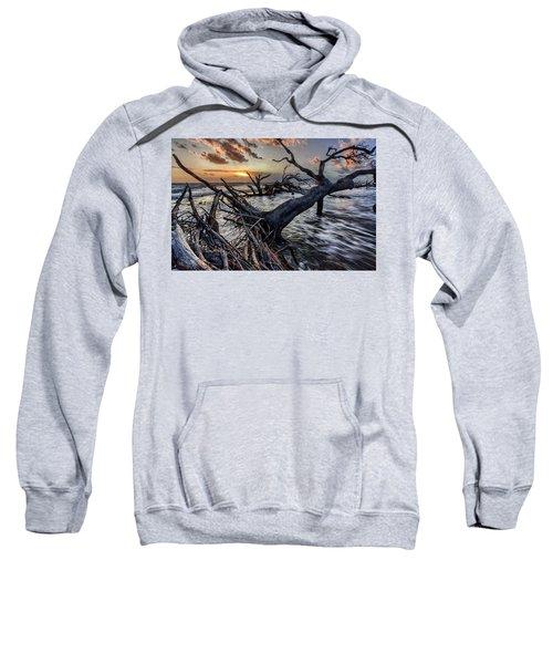 Driftwood Beach 5 Sweatshirt