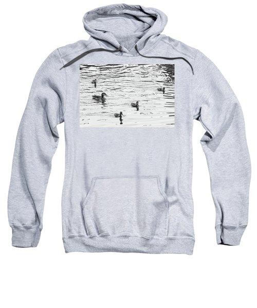 Duck And Ducklings Sweatshirt