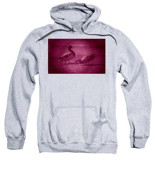 Ducks #1 Sweatshirt