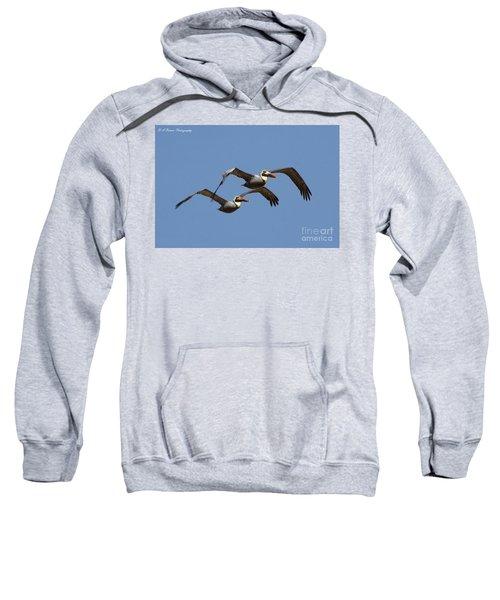 Duel Pelicans In Flight Sweatshirt