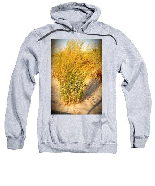 Dune Grass II  - Jersey Shore Sweatshirt