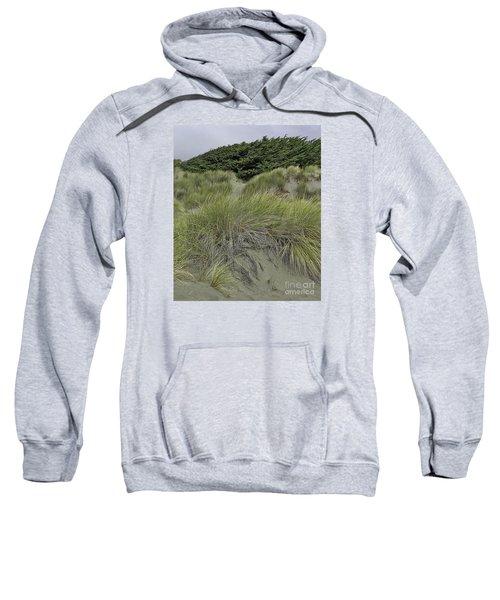 Bodega Dunes #3 Sweatshirt