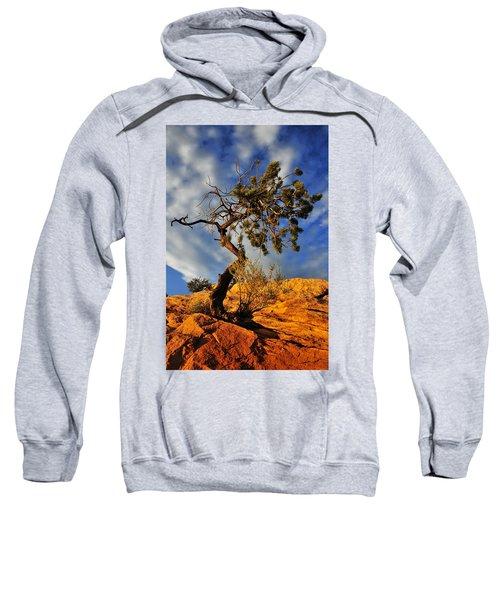 Dusk Dance Sweatshirt