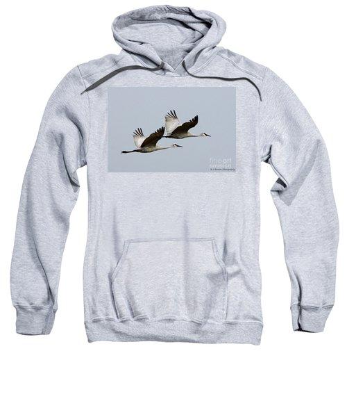 Dynamic Duo Sweatshirt