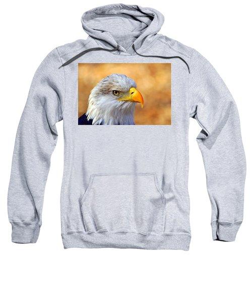 Eagle 7 Sweatshirt