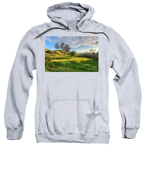 Eagle Grove At Lake Casitas In Ventura County, California Sweatshirt