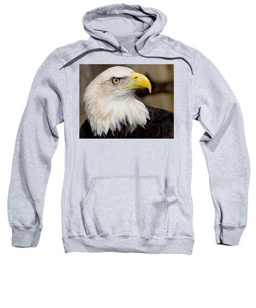 Eagle Power Sweatshirt