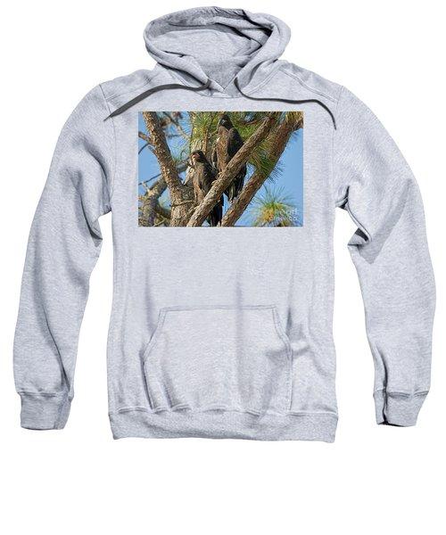 Eaglet Pair Sweatshirt