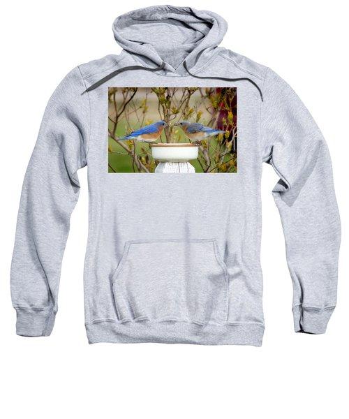 Early Bird Breakfast For Two Sweatshirt by Bill Pevlor
