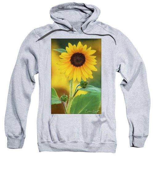 Early Morning Sweatshirt