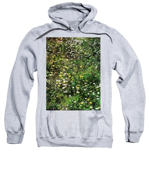 Early Spring Beauty In Umbria Sweatshirt