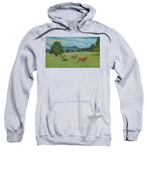 Early Spring Evergreen Sweatshirt