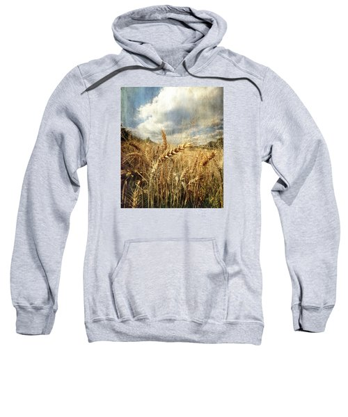Ears Of Corn Sweatshirt