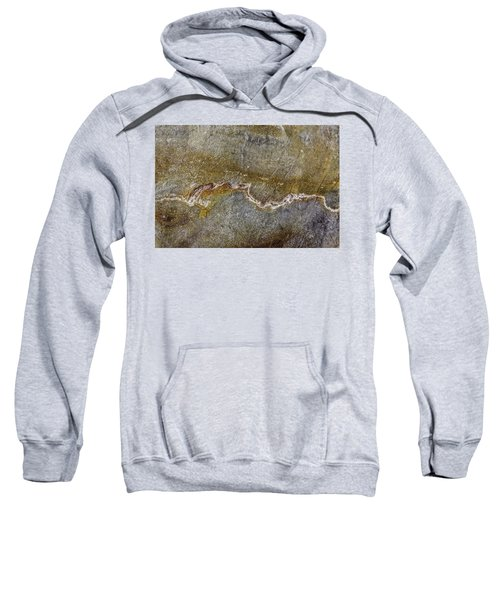 Earth Portrait 000-204 Sweatshirt