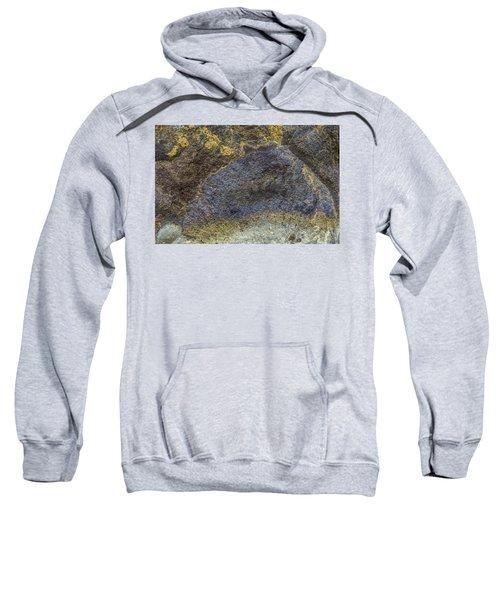 Earth Portrait 001-026 Sweatshirt