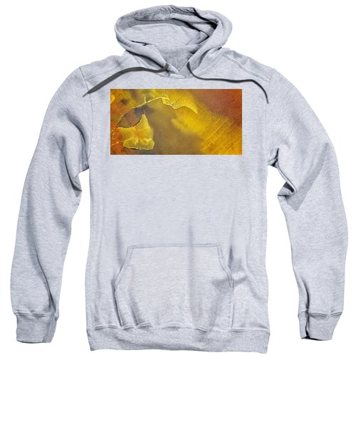 Earth Portrait 001-120 Sweatshirt