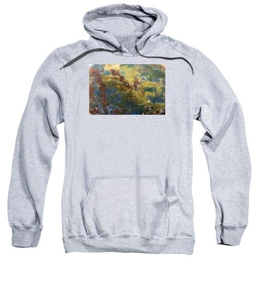 Earth Portrait 008 Sweatshirt