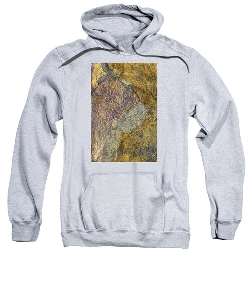 Earth Portrait 011 Sweatshirt