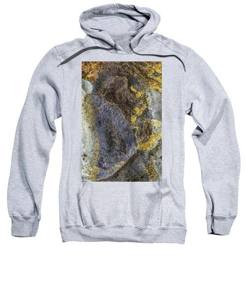 Earth Portrait 012 Sweatshirt