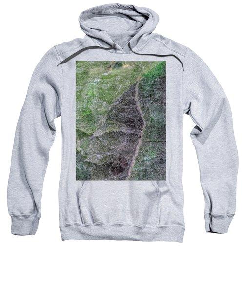 Earth Portrait 294 Sweatshirt