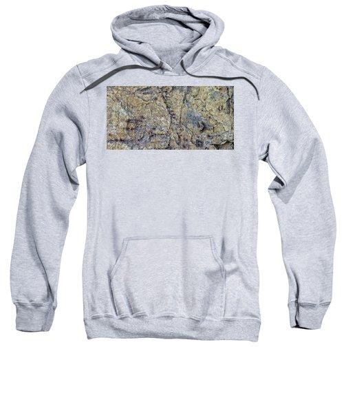 Earth Portrait L1 Sweatshirt