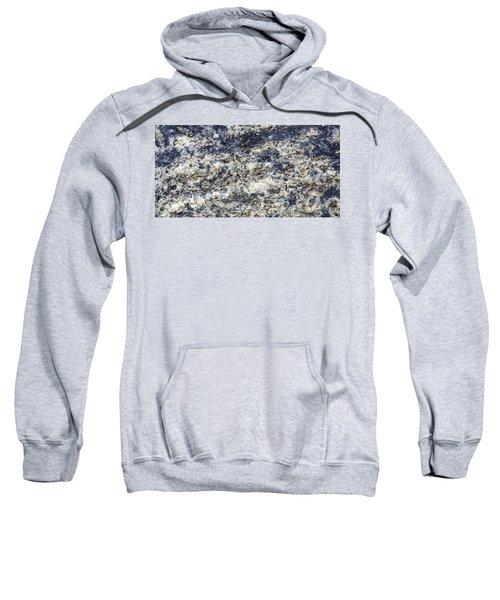 Earth Portrait L5 Sweatshirt