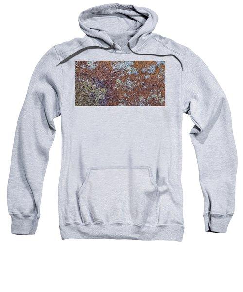 Earth Portrait L6 Sweatshirt