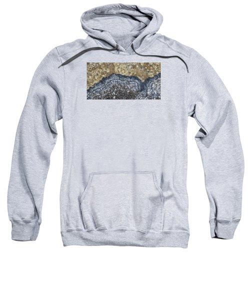 Earth Portrait L9 Sweatshirt
