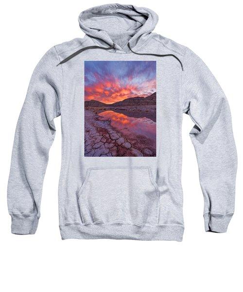 Earth Scales Sweatshirt