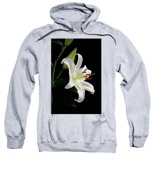 Easter Lily 5 Sweatshirt