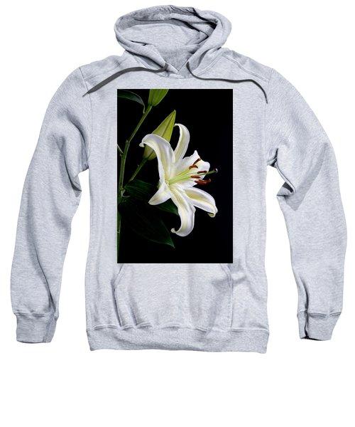 Easter Lily 5 Sweatshirt