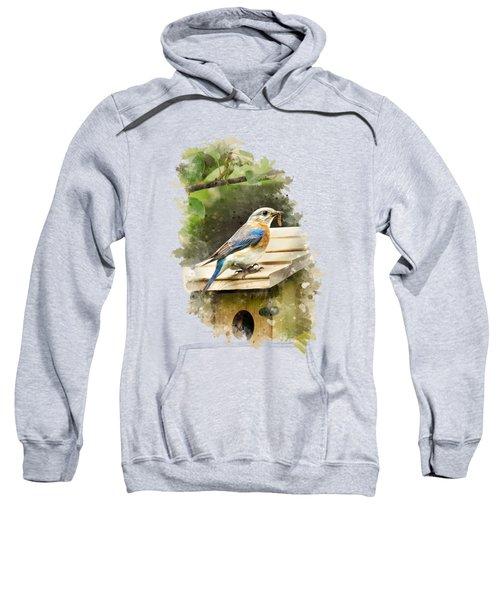 Eastern Bluebird Watercolor Art Sweatshirt