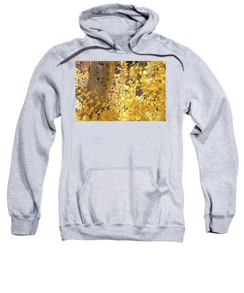 Eastern Sierras  Sweatshirt