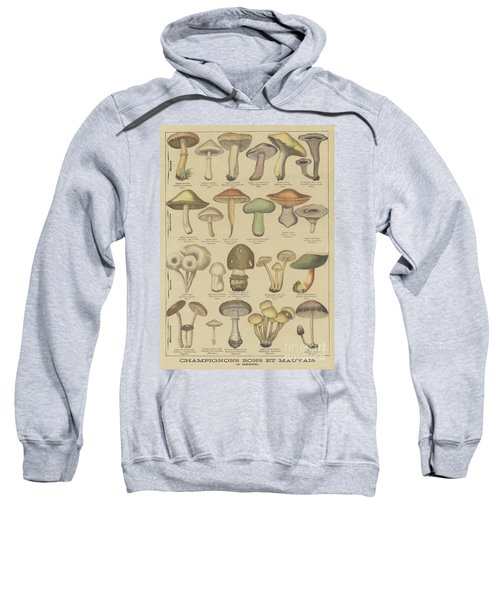 Edible And Poisonous Mushrooms Sweatshirt