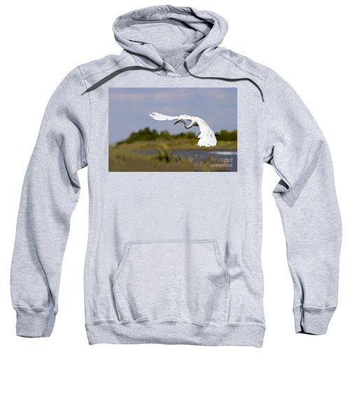 Egret Ballet Sweatshirt