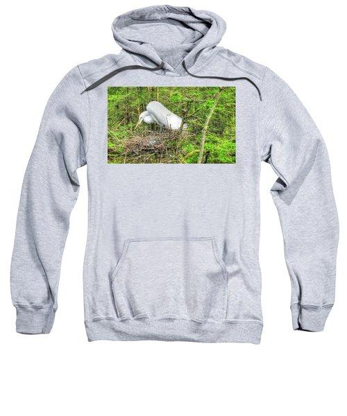 Egrets And Eggs Sweatshirt
